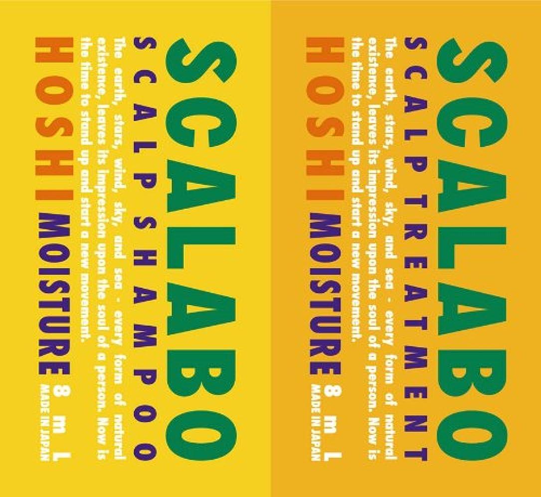 まっすぐ投資するフレットスカラボ 薬用 スカルプシャンプー&トリートメント HOSHI 1DAYトライアル 各8ml