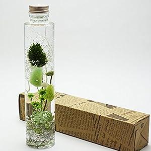 ハーバリウム Relax Green ( リラックス グリーン )1本箱入 母の日 プレゼント に最適です