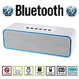 AGM Bluetooth スピーカー HIFI ステレオ YOUTUBE視聴可 低音専用ウーハー装備 迫力サウンド ( FMラジオ ) ( ハンズフリー テレホン ) ( LINE IN ) ( USBメモリー ) ( MICRO SD ) 安心の基本機能一年メーカー保証 日本語説明書付 DY22 (ホワイト)