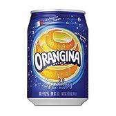 サントリー オランジーナ 缶280ml×24本入り×2ケース