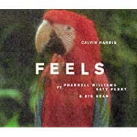 Feel [12 inch Analog]