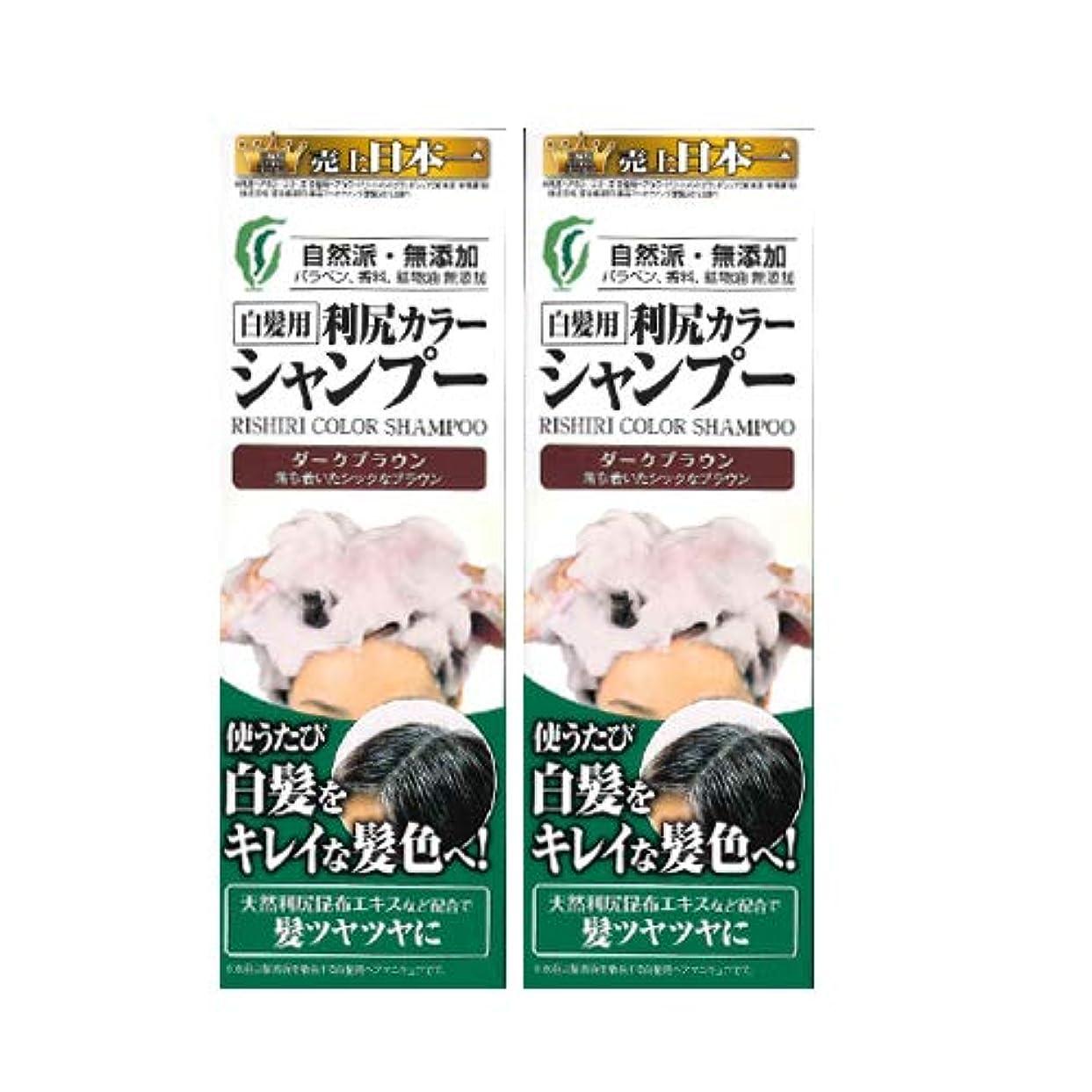 連続的栄養任意利尻カラーシャンプー2本セット(ダークブラウン)