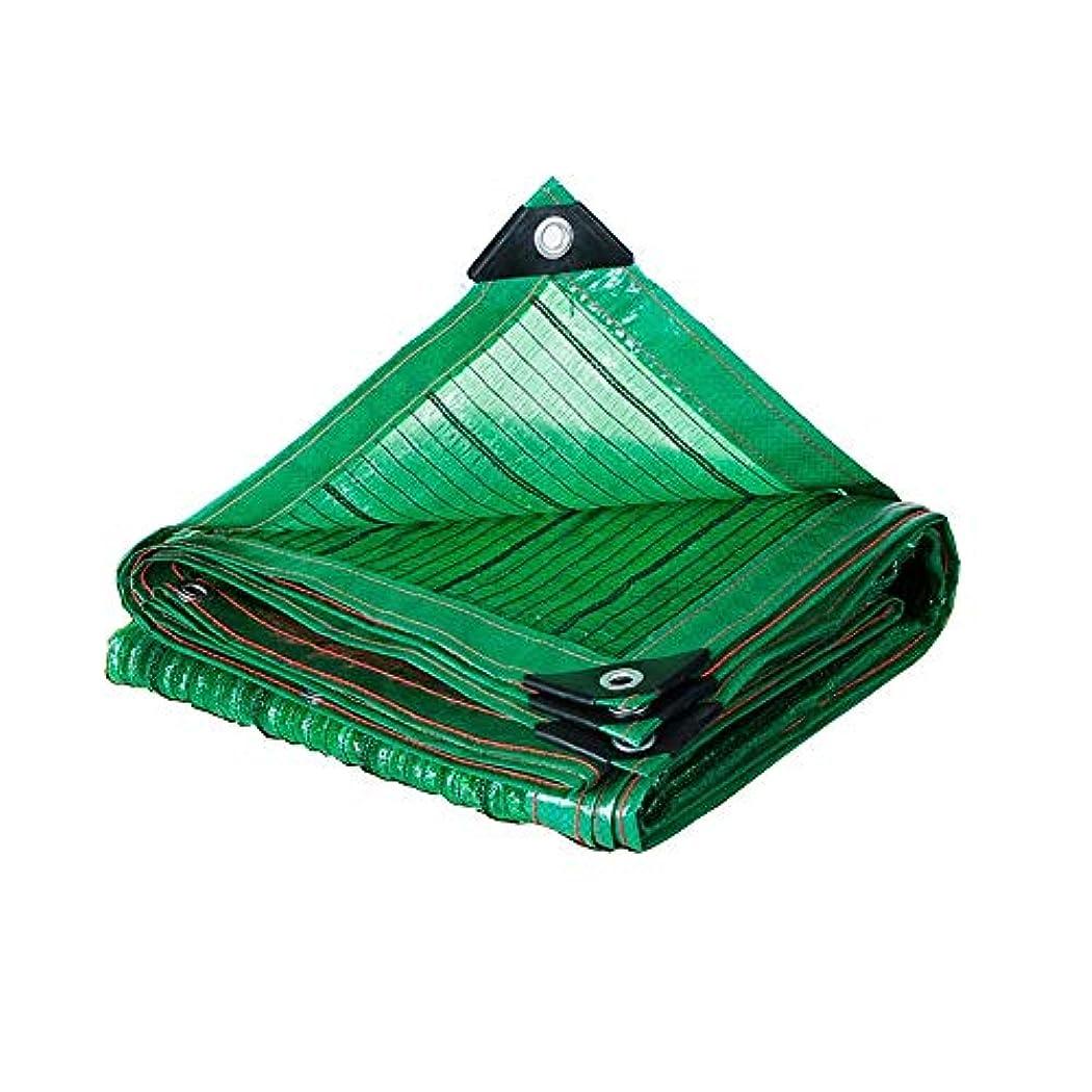 視線ゲストずっとXIAOLIN サンメッシュシェードネット日焼け止めシェード布UV耐性ネット80%シェーディング率ガーデンフラワープラント (サイズ さいず : 3x1m)