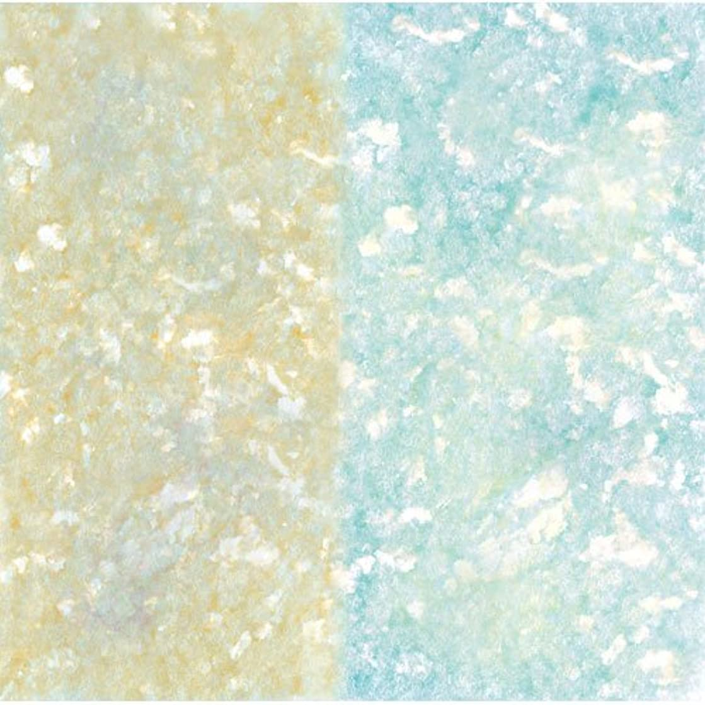部屋を掃除する記憶ハプニングピカエース ネイル用パウダー ピカエース エフェクトフレークL #419 アクア 0.2g アート材
