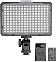 Neewer Dimmable 176 LED Video Light 5600K on Camera Light Panel with 2200mAh Battery and USB Charger for Canon