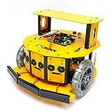 2WDモバイルロボット (10004) [台車ロボット?研究開発]
