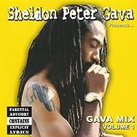 Vol. 1-Sheldon Peter Gava Presents Gava Mix
