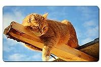 猫が木の上で遊んで パターンカスタムの マウスパッド 動物 デスクマット 大 (60cmx35cm)