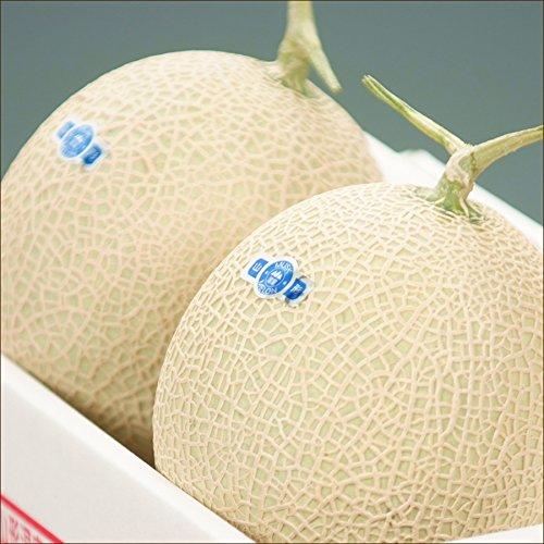 山形県産 アールスメロン 1玉(秀品/1玉 約2kg) ギフト プレゼント