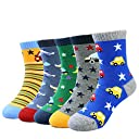 OKIDSO 子供 ボーイズ 靴下 5足セット 車/動物 抗菌防臭 滑り止め 吸汗吸湿 可愛い 綿 (車)