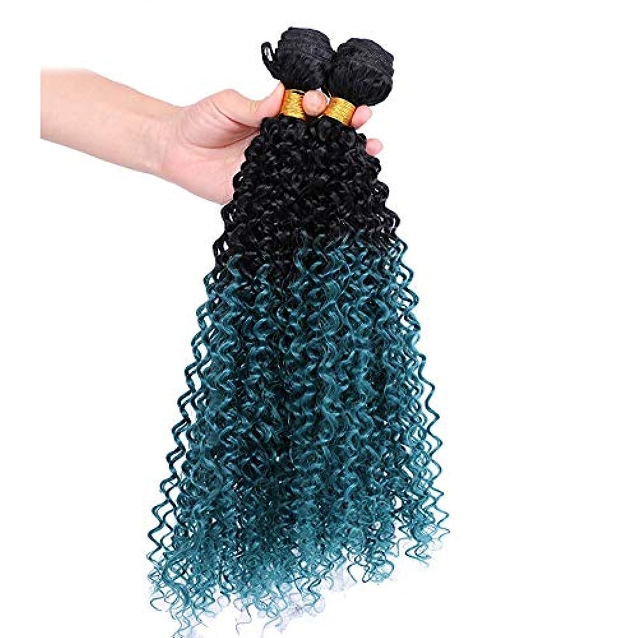 パントリー記念碑的な拡大するYAHONGOE 3バンドルブルーカーリー総合ヘアエクステンション女性のコスプレパーティードレス合成髪レースかつらロールプレイングかつらロングとショート女性自然 (色 : 青, サイズ : 22inch)