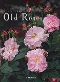 オールドローズ好きのOld Roses 画像