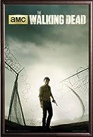 The Walking Dead–Season 4キーアートポスターTVアートプリントRick (24x36) Premium Copper Wood Framed Poster xR160029