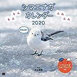 もふもふふわふわ シマエナガ カレンダー 2020 (翔泳社カレンダー)