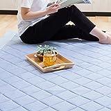 涼感ひんやりラグマット 「クールラグ」 程よい気持ちよさ 185cm×235cm(約3畳用) 裏面滑り止め付 丸洗い可能 速乾性 ブルー色