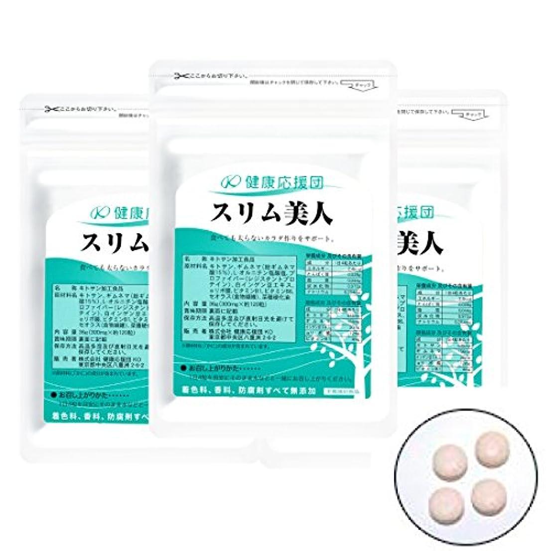 ユーザー胸野菜スリム美人 3袋360粒 (αリポ酸?白インゲン豆エキス?オルニチンプラス)