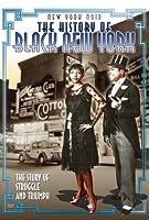 New York Noir: The History of Black New York [DVD] [Import]