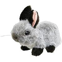 ウサギ グレー