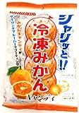 早川製菓 冷凍みかんキャンディ 85g×20袋