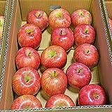 山形産 サンつがる りんご 5kg 約12?20玉前後 訳あり ご家庭用