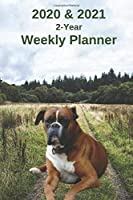 2020 & 2021 Weekly Planner   Two Year Appointment Book Gift   Two-Year Agenda Notebook for Dog Owners: Boxer Cover Month Calendar: 2 Years of Monthly Plans   Daily Reminder Logbook    Day Log For Academic, Work, Personal, Dog Training Schedule, etc.