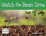 Watch the Bean Grow (Engage Literacy: Engage Literacy Yellow - Extension B)