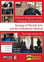 Effective Response to the Changing Environment - Synergy of Martial Arts and the Feldenkrais Method, Vol. 2