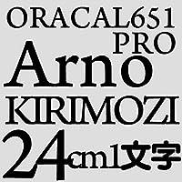 24センチ arnopro ブラック sRGB 6,6,7 oracal651 ファイングレード 切文字シール カッティングシール カッティングステッカー