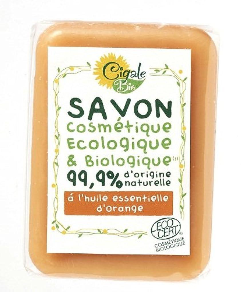 隣接する開いた適度なシガールビオ オーガニックソープ オレンジ
