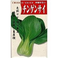 在来固定種野菜の種「チンゲンサイ(青梗菜)」5ml約1250粒 畑懐〔はふう〕