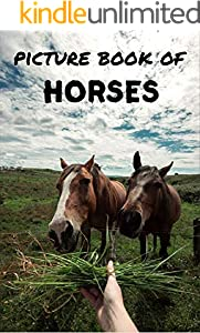 Picture book of horses: Photos of horses - Picture book for kids and more - Picture book for seniors with Dementia and Alzheimer - (English Edition)