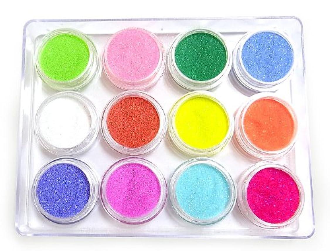 引き出し添加剤属性超微粒子0.1mmグリッターラメ12色セット