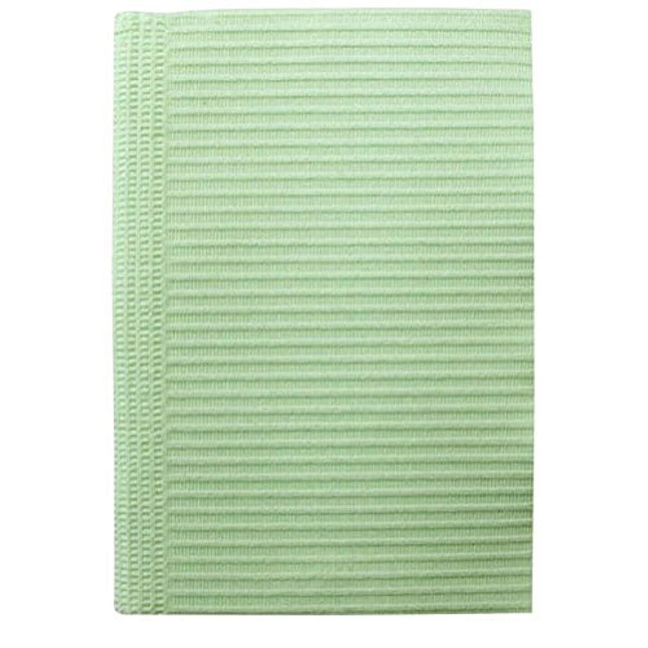 ペイント有毒浸漬SunshineBabe サンシャインベビー ペーパーシート 50枚 グリーン