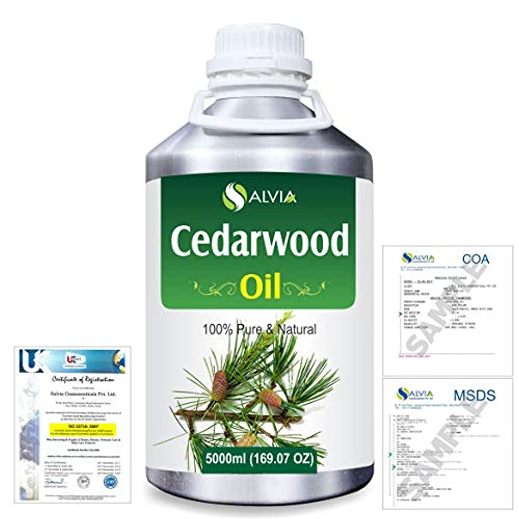 コンサート模索優勢Cedar Wood (Juniperus virginiana) 100% Natural Pure Essential Oil 5000ml/169fl.oz.