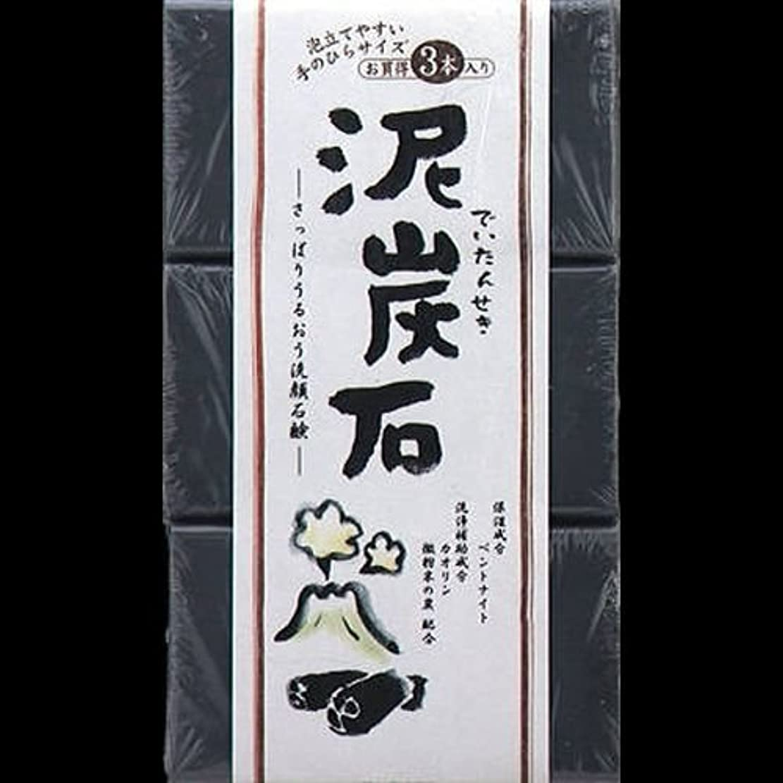 ペリカン 泥炭石 110g*3個 ×2セット