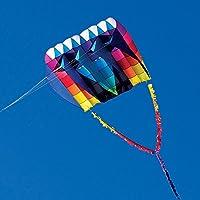 Into the Wind UltraFoil 30 Kite