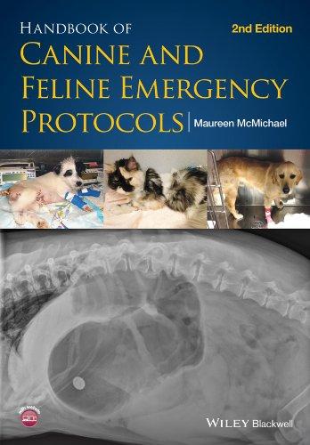 Download Handbook of Canine and Feline Emergency Protocols 1118559037