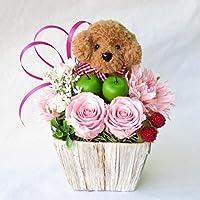 花 誕生日プレゼント 女性 彼女 花 誕生日 プレゼント 女性 プリザーブドフラワー バラ プレゼント 女性 フラワーアレンジメ ント トイプードル茶色