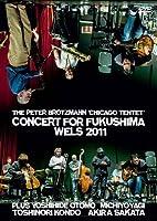 Concert for Fukushima Wels 2011 [DVD] [Import]