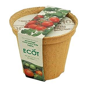 聖新陶芸 エコットM ミニトマトの関連商品10