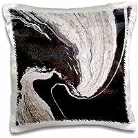 """3dローズFlorene Granite–抽象化と大理石イメージの劇的なブラックとホワイトSwirly Granite–枕ケース 16"""" x 16"""" pc_252626_1"""