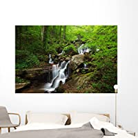 """Amicalola Waterfall壁壁画by Wallmonkeys Peel and Stickグラフィックwm158820 72""""W x 48""""H - Colossal FOT-23406243-72"""