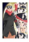 THE LAST -NARUTO THE MOVIE-(通常版)[DVD]