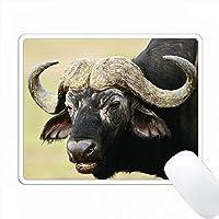 ケニア、マサイマラ国立保護区、ケープ・バッファローのクローズアップ PC Mouse Pad パソコン マウスパッド