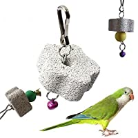 Lautechco 口のオウムの石砥石トトロリス歯 鳥のおもちゃ