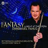 ファンタジー~オペラ座の夜 画像