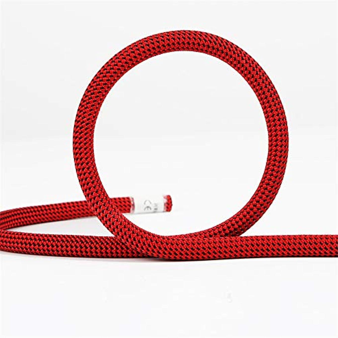 物理的なティーンエイジャー不実屋外クライミングロープ、10.5ミリメートルツリーウォールクライミング機器ギア屋外サバイバル火災エスケープ安全ロープ10メートル20メートル30メートル50メートル,red,10m