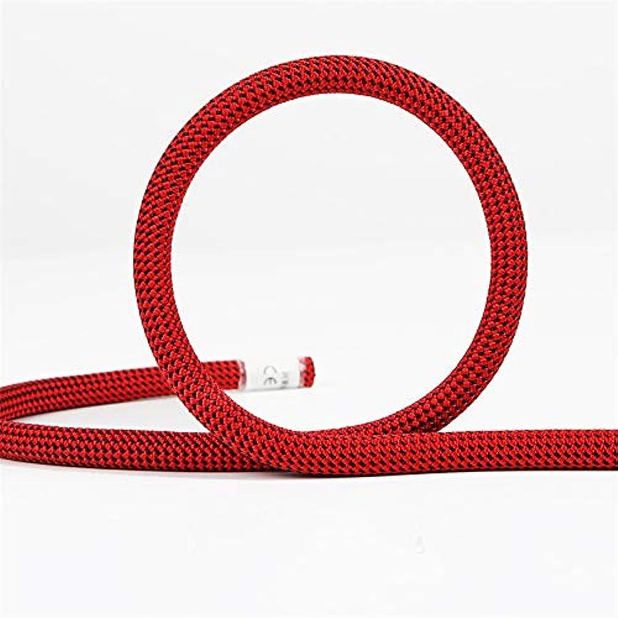 エゴマニア敵対的バージン屋外クライミングロープ、10.5ミリメートルツリーウォールクライミング機器ギア屋外サバイバル火災エスケープ安全ロープ10メートル20メートル30メートル50メートル,red,10m