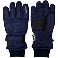 アスナロ(グローブ) スキー手袋 メンズ 内側フリース リブ使い グローブ 防寒 手袋