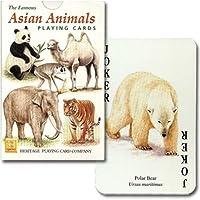 P0005【アジアに生息する動物達】アジアン?アニマル